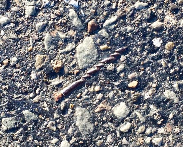 drill bit embedded in road tar