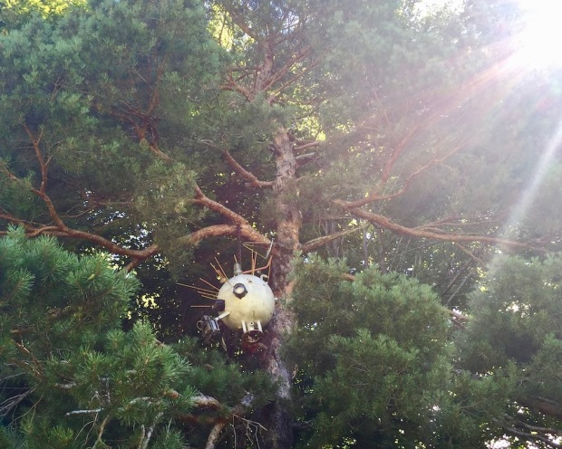 sculpture of robot-like orb hanging from tall pine tree