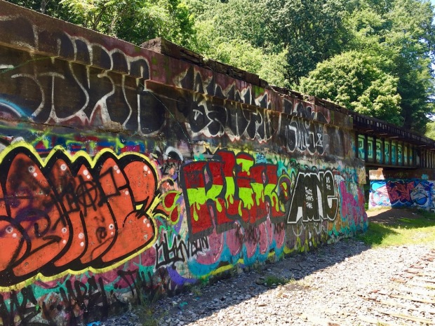train trestle through woods covered in graffiti