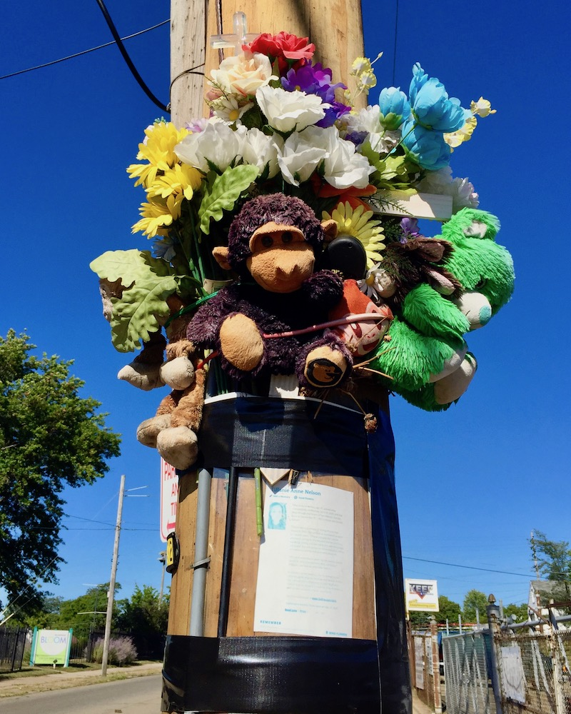 memorial on utility pole including stuffed animals and flowers
