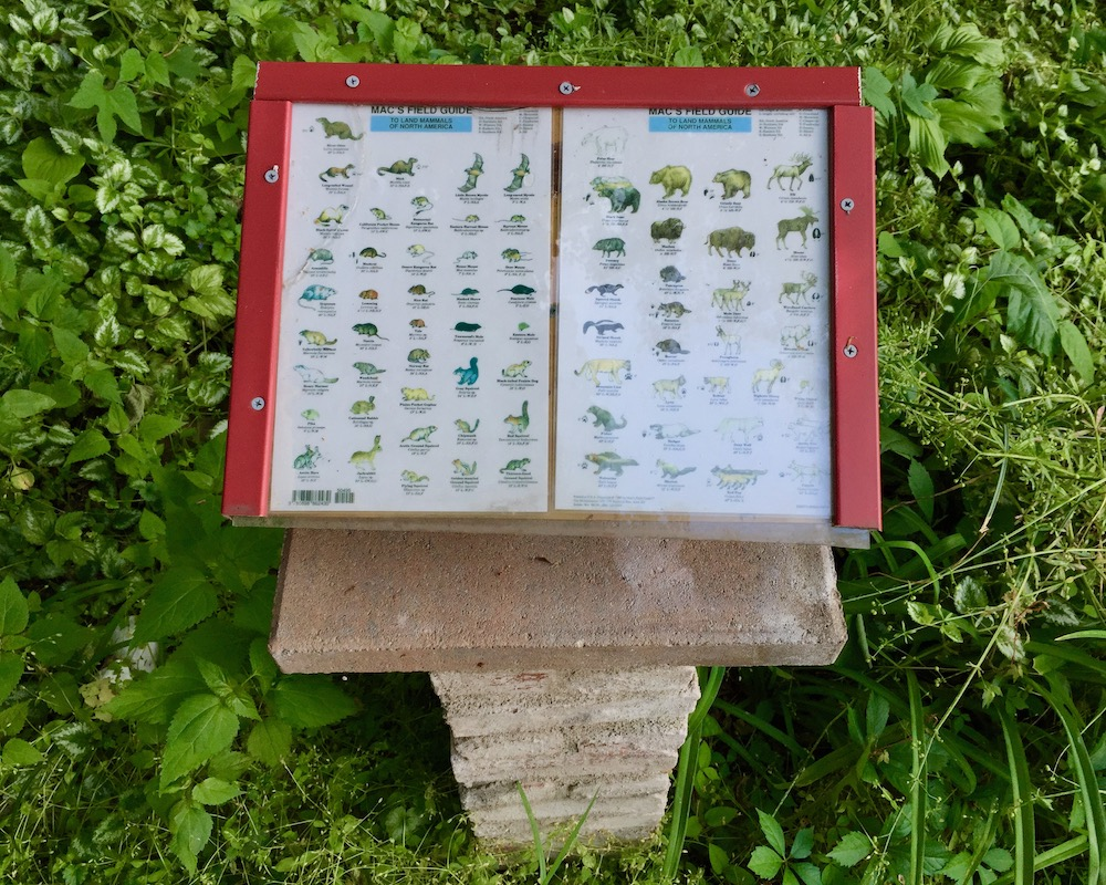 pages from wild animal field guide mounted in Pittsburgh's Central Park