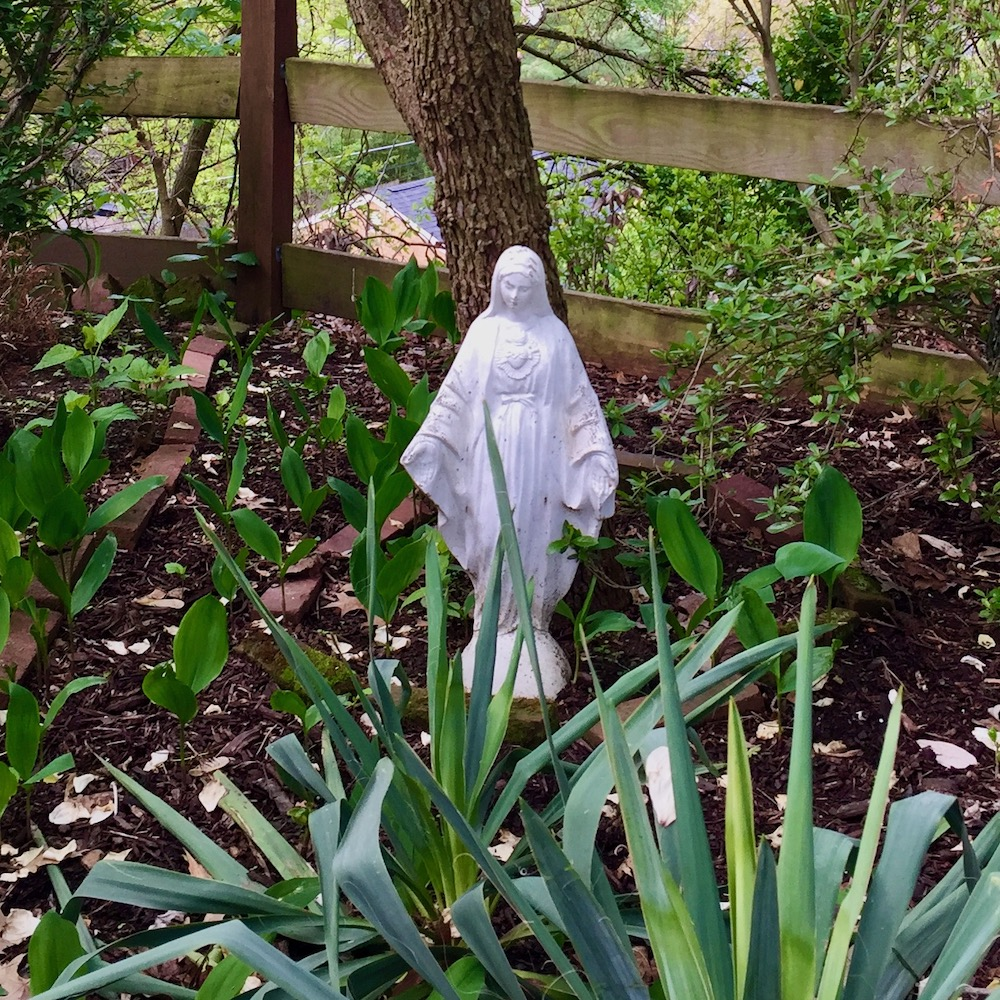 statue of Mary under a tree in residential garden
