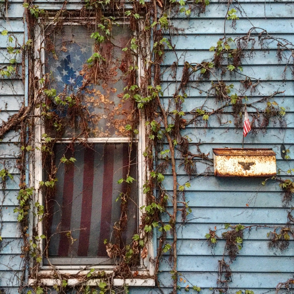 row house window overgrown with vines showing American flag used as a curtain inside